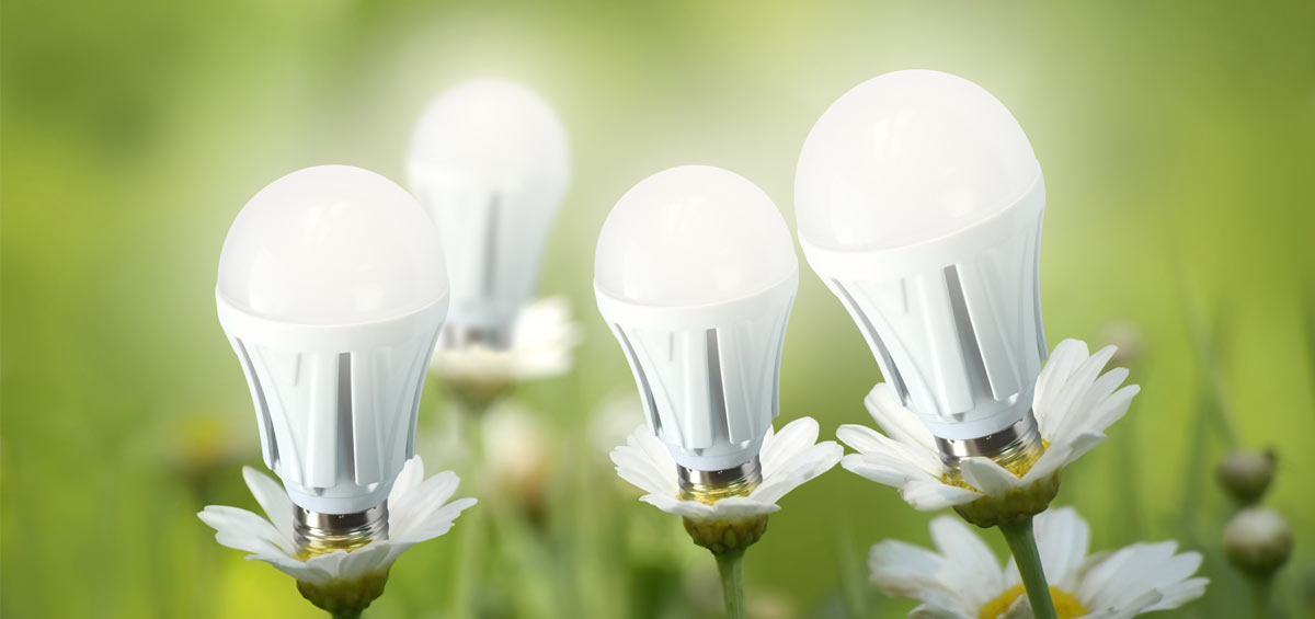 LED Light Bulbs for Your Environment